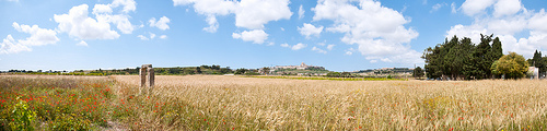 via flickr.com Looking towards the medieval capital of Mdina from a wheat field near the Crafts Village in Malta.